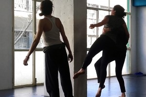 plandeestudio-dansa